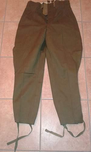 Original  ak  officertrousers?