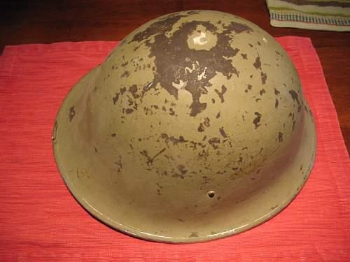 Need help identifying this turtle helmet