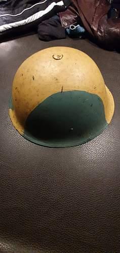 Turtle helmet Camo original?