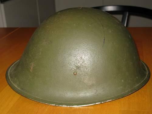 Click image for larger version.  Name:Mrk.3 turtle 001.JPG Views:94 Size:95.1 KB ID:613521