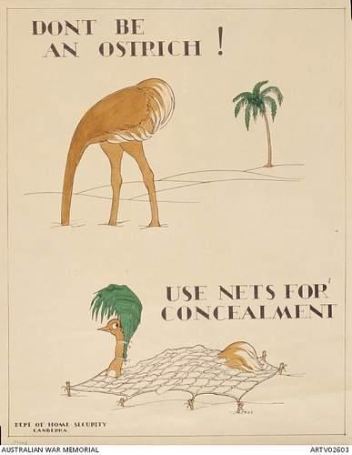 Australian Camoflage Research