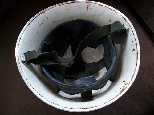 NHSR turtle helmet