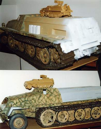 My old TIGER in 1/9 scale