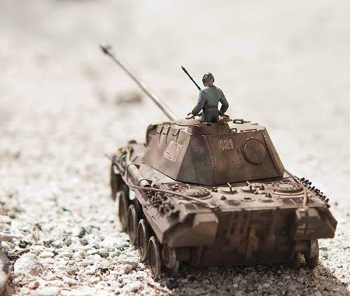 Click image for larger version.  Name:Tank_2878.jpg Views:595 Size:127.0 KB ID:768913