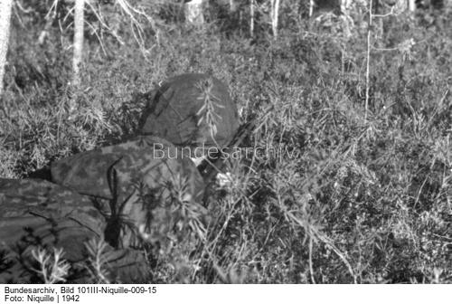 Waffen-SS Camouflage in period photos