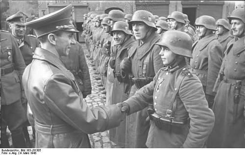 Click image for larger version.  Name:Bundesarchiv_Bild_183-J31305%2C_Auszeichnung_des_Hitlerjungen_Willi_H%C3%BCbner.jpg Views:252 Size:57.3 KB ID:30690