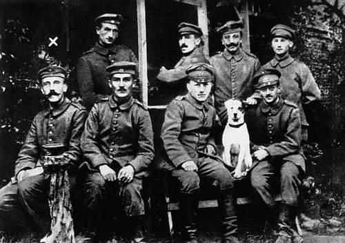 Hitler's dogs