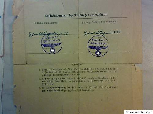 Nice small late  Waffen SS document grouping with photo