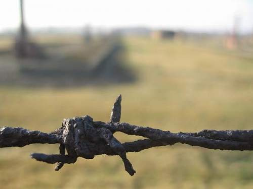 Click image for larger version.  Name:886141-Barbed-wire-Auschwitz-Birkenau-0.jpg Views:39 Size:18.9 KB ID:524214