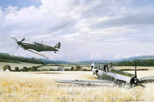 Click image for larger version.  Name:spitfire-paintings-1940.jpg Views:306 Size:140.9 KB ID:536638