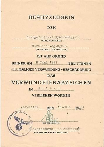 Click image for larger version.  Name:Josef Spatzenegger 15.Sturm-Regiment 006.jpg Views:270 Size:170.1 KB ID:583685