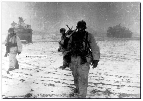 Click image for larger version.  Name:Battle-Korsun-Cherkassy-1944-Eastern-front-ww2-waffen-SS-002.jpg Views:636 Size:71.3 KB ID:668778