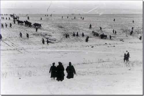 Click image for larger version.  Name:battle-korsun-cherkassy-shevchenko-eastern-front-1944-shanderovka-february-17-1944-breakout-006.jpg Views:179 Size:58.9 KB ID:668779