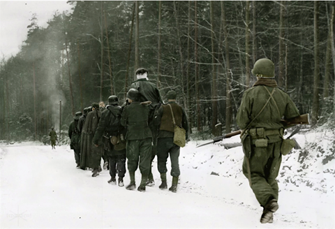 6th SS Gebirgs Division 'Nord' image