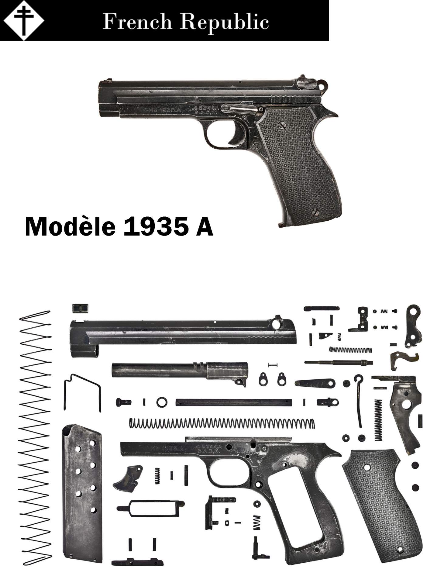 Weapon\'s Anatomy Project!