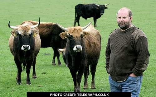Click image for larger version.  Name:Derek Gow Nazi Cattle.jpg Views:40 Size:94.7 KB ID:786454