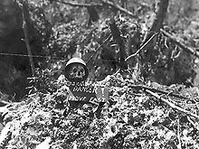 Name:  220px-Skull_and_danger_sign_on_Peleliu.jpg