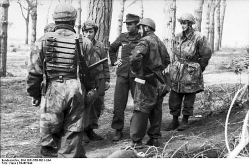 Click image for larger version.  Name:Bundesarchiv_Bild_101I-578-1931-03A_Italien_Fallschirmjäger_im_Wald-640x424[1].jpg Views:15 Size:76.0 KB ID:807330