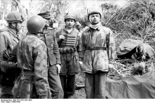 Click image for larger version.  Name:Bundesarchiv_Bild_101I-578-1931-08A_Italien_Fallschirmjäger_im_Wald-640x425[1].jpg Views:31 Size:78.2 KB ID:807331