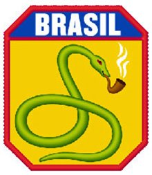 A cobra vai fumar! (the snake will smoke). Brazil in ww2!