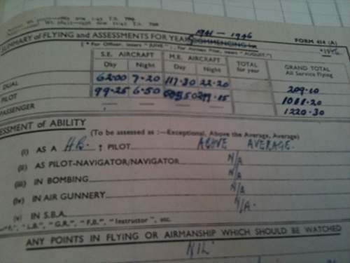 Information on Pilot during WW2