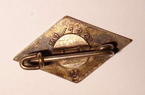 Authentic HJ membership pin?