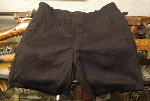 HJ Shorts and buckle and a little pennant: good or bad?