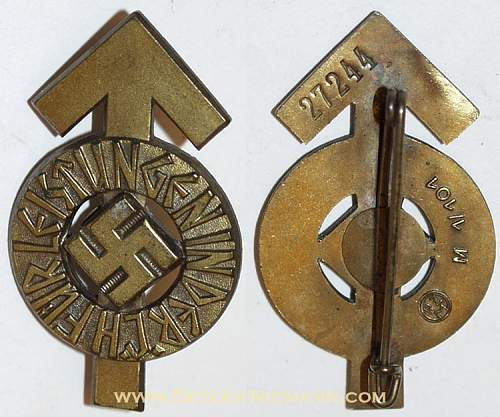 Youth proficiency badges