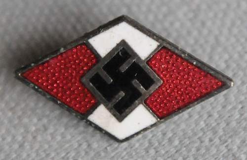 HJ Membership Pin: fake or real