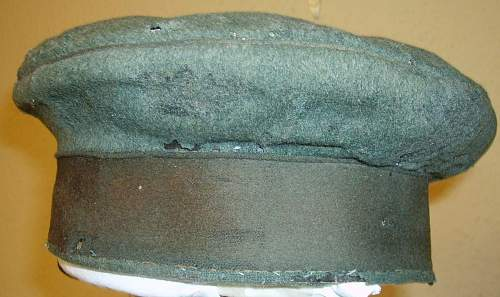a badly damaged field cap...can it be saved ?