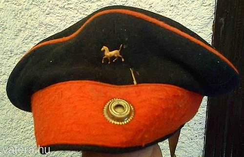 Field cap identification