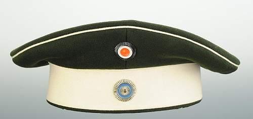 Click image for larger version.  Name:bonnet-troupe-du-chevau-leger-regt-n-7-ou-8-bavarois_1.jpg Views:35 Size:31.9 KB ID:799760