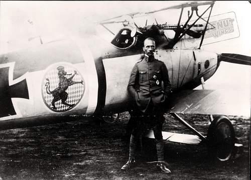 Click image for larger version.  Name:Albatros D.V Jasta 21 D.2034-17, Eduard Ritter von Schleich (Greg VanWyngarden)2.jpg Views:51 Size:146.5 KB ID:929889