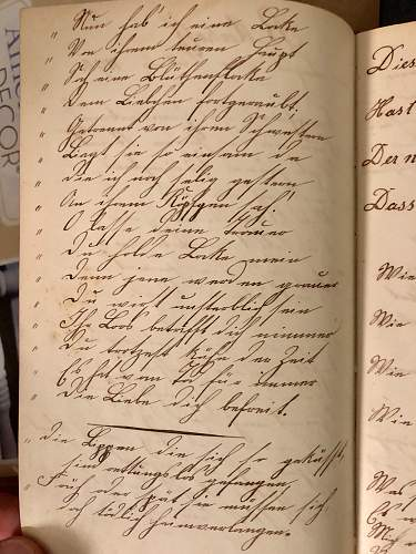 Help Translating Imperial German Diary!