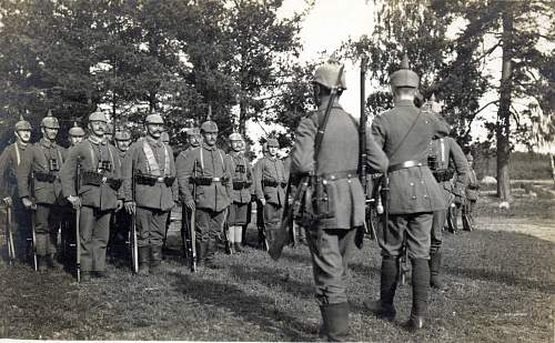 I am searching for info on Landsturm Infanterie Regiment Nr. 11 assigned to 8. Armee in 1916!