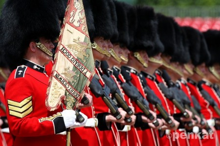 Name:  ___ Colour of No1 Coy Welsh Guards_ The Welsh Guards Company colours are.jpg