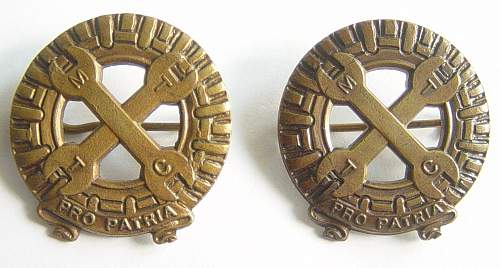 Badges of the Mechanised Transport Corps