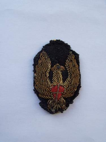 WW2 air force badge? wings raised red shield with gold cross