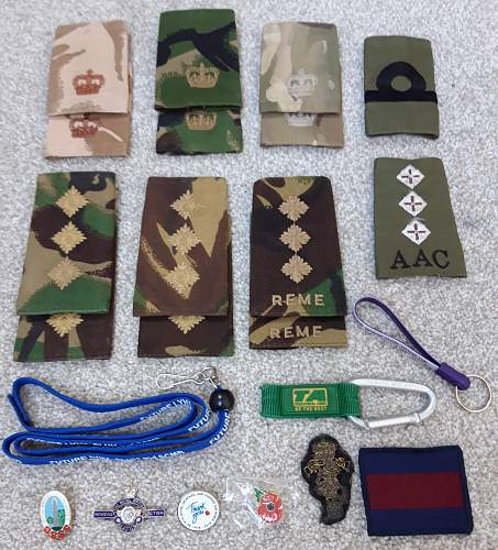 British Army Badge Collection