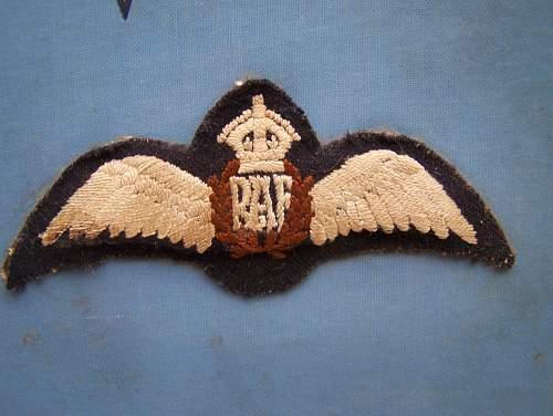 RAF pilot wing question.