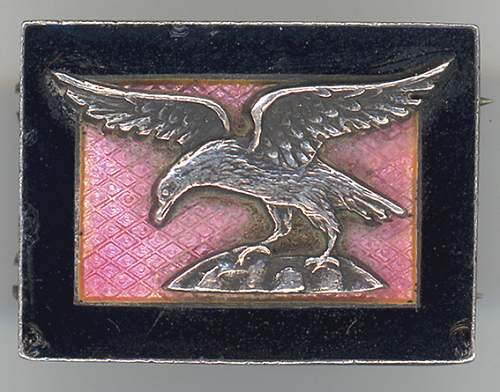 Help with military badge/pin?