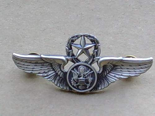 US airforce wings