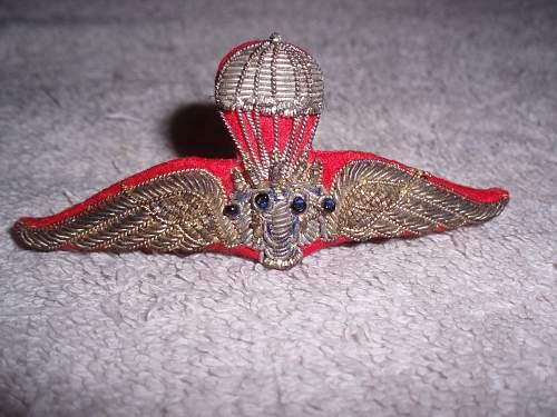 Paratrooper badge
