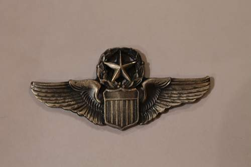 Need assistance in identifying and valuing badges for sale