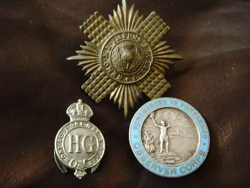 Small group of British badges,