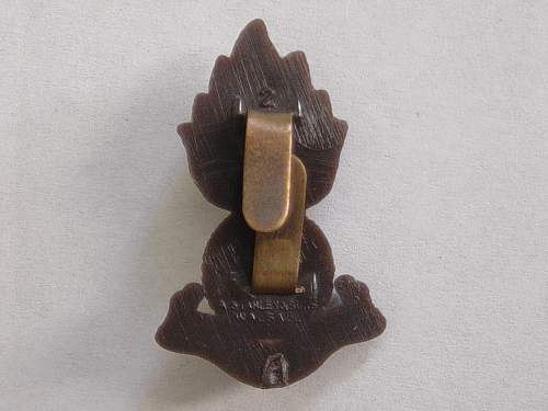 Click image for larger version.  Name:Plastic cap badge 007.jpg Views:328 Size:217.2 KB ID:335435