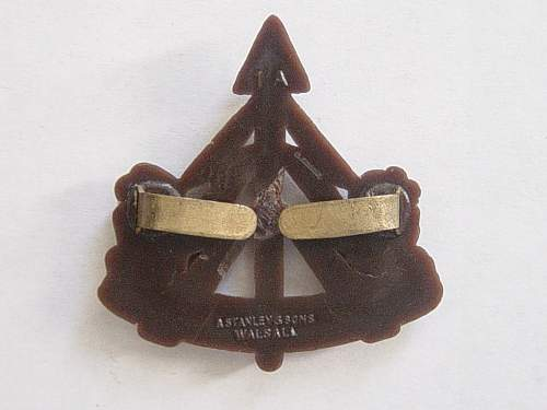 Click image for larger version.  Name:Recce Corps Plastic cap badge reverse..jpg Views:506 Size:186.6 KB ID:335437