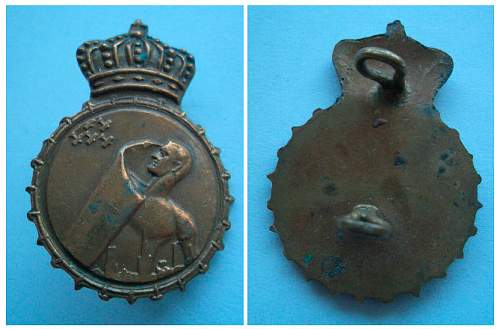 Unidentified badge-air defence of some kind maybe?