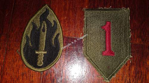 Couple of US shoulder patches
