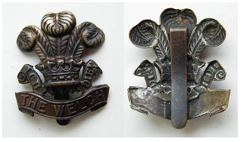 Click image for larger version.  Name:Welch FS cap badge m.jpg Views:181 Size:185.2 KB ID:440030